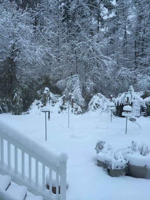 Snowfall by Debbie Suggs