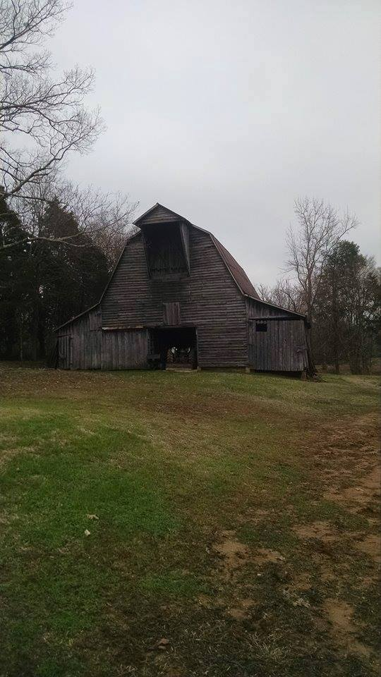 Barn in Spring Creek, Tennessee ~ Photograph (c) 2015  by Michael Todd
