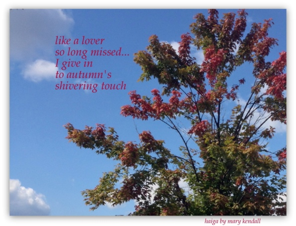 autumn haiga 2015