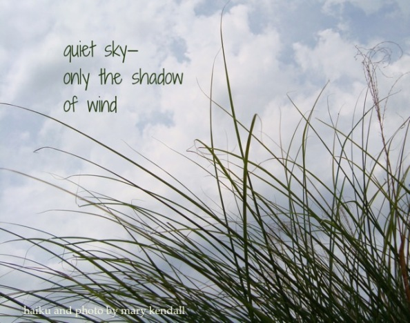 Published on Daily Haiga
