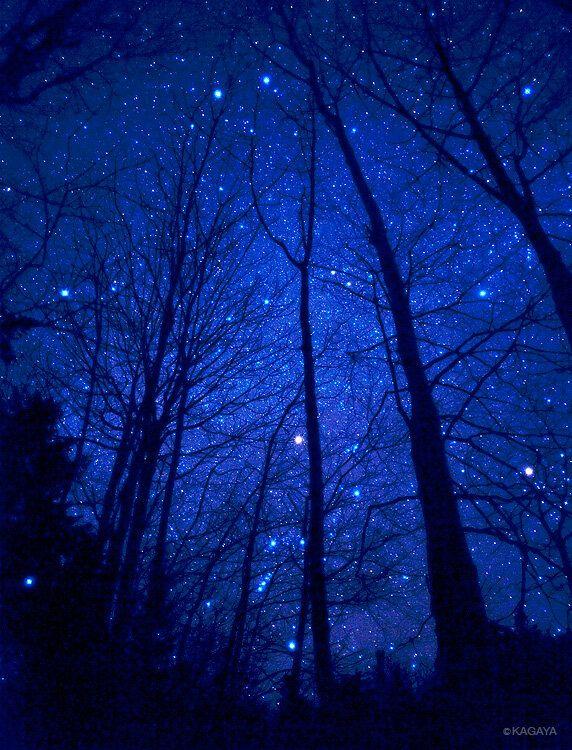 starry night sky kayaga