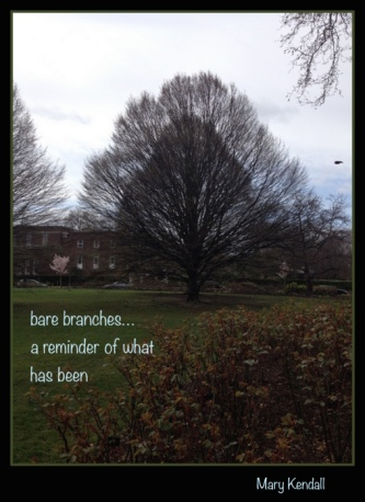 bare-branches-haiga