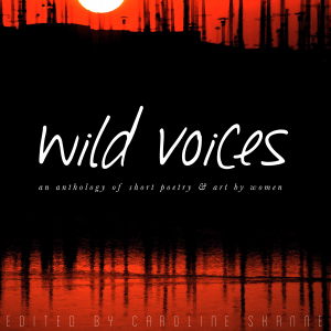 wild-voices-cover