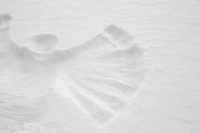 snow angel public domain picture 2018