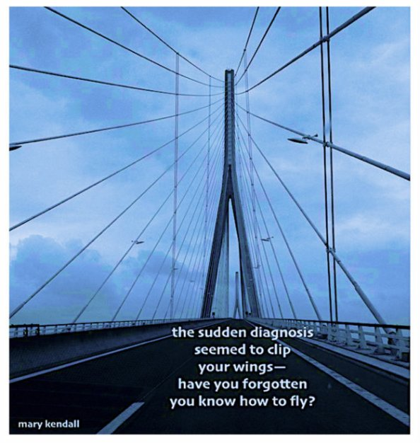 the sudden diagnosis haiga